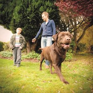 4020 - DOG garden FINAL